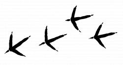 Bird tracks clipart - Clipground