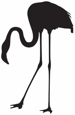 Flamingo Silhouette Clip Art at GetDrawings.com | Free for personal ...