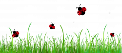 Ladybug Clipart 5 HD Images | All Creatures | Pinterest | Ladybird ...
