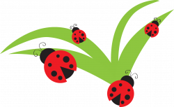 28+ Collection of Ladybug Birthday Clipart | High quality, free ...