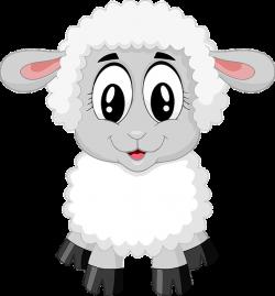 Free Image on Pixabay - Lamb, Sheep, Cute, Farm, Animal | Pinterest ...