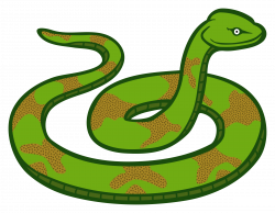 28+ Collection of Picture Of Snake Clipart   High quality, free ...