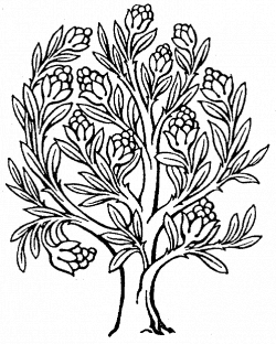 enchanted tree clip art black and white - Google Search | Final Cut ...