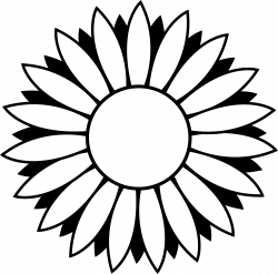 Pin by laura wagstaffe on inspiration | Pinterest | Sunflowers