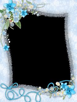 Transparent Blue PNG Frame with Flowers | Frames | Pinterest ...