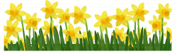Grass with Daffodils PNG Clipart Picture   Transparentes Blumen ...