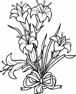 Easter Lily Drawing at GetDrawings.com | Free for personal use ...