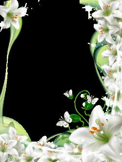 Lilies frame - suitable for sympathy card | Frames/Borders/Corner ...