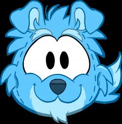 Blue Border Collie Costume | Club Penguin Wiki | FANDOM powered by Wikia