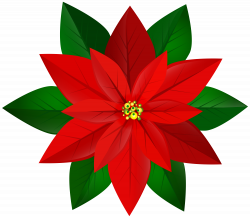 Christmas Red Poinsettia PNG Clip Art Image | Gallery Yopriceville ...
