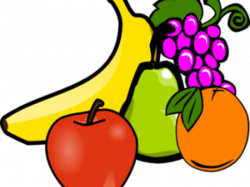 Picture Fruits Free Download Clip Art - carwad.net