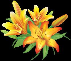 Yellow Lilies Flowers Decoration PNG Clipart Image | kedvenceim ...