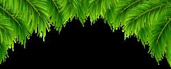 Palm Leaves Decor PNG Clip Art Image | Dividery | Pinterest | Clip art