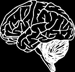 Brain - White Clip Art at Clker.com - vector clip art online ...