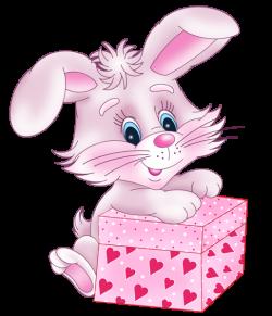 Милый зайчик с Валентина Подарочная коробка PNG изображение клипарта ...