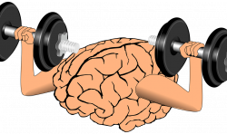 Chiropractic Adjustment Found to Improve Brain Function 20% - Life ...