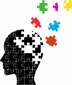 Mild cognitive impairment Cognition Cognitive disorder Alzheimer's ...