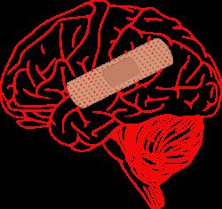 BrianaSummer Fenton – Increasing Brain Injury Awareness,Testing ...
