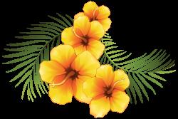 Exotic Floral Decoration Transparent PNG Clip Art Image | flower art ...