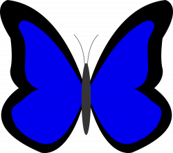 Light Blue Butterfly Clipart | Clipart Panda - Free Clipart Images