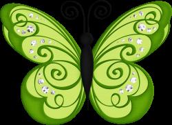 BORBOLETAS & JOANINHAS E ETC. | CLIPART - BUTTERFLIES | Pinterest ...