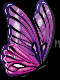 Pin by Marina ♥♥♥ on Borboletas II   Pinterest   Butterfly, Blog ...