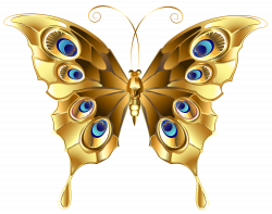 Gold Butterfly PNG Clip Art Image | Gallery Yopriceville - High ...