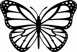 Outline Image Of Butterfly #788 - 1300×1296 | loubet-modelisme