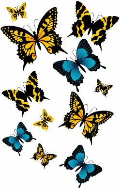 Butterflies PNG Clipart Picture | Gallery Yopriceville - High ...