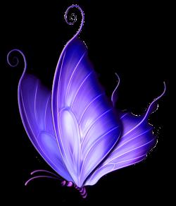 ✿⁀Butterflies‿✿⁀ | ᏰᘎեեᏋᖇƒƖᎥᏋՏ*3 | Pinterest