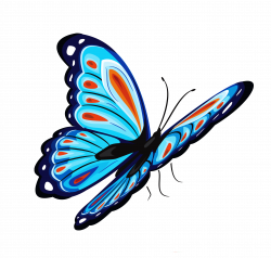 Common Beliefs and Symbolism Associated with Butterfly   PNG All ...