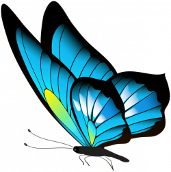 Butterfly Clip art - red butterfly 596*600 transprent Png Free ...