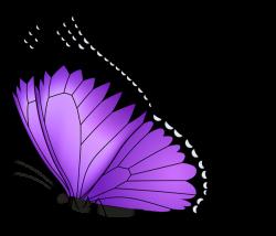 Purple Butterfly Transparent PNG Clip Art Image | Bugs Clipart ...