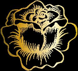 Golden Rose PNG Clip Art Image   ✍✄Printables✄✍   Pinterest ...