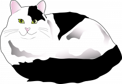 Clipart - Black and White Fluffy Cat