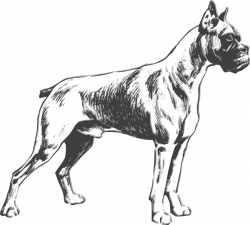 Outline Drawings of Dogs | dog clip art | Cartoons & Illustrations ...