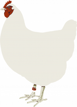 Clipart - Chicken