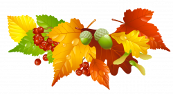 Autumn Leaves and Acorns Decor PNG Picture | ✪ Clipart ...