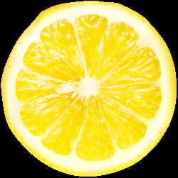 Lemon Slices Transparent PNG Clip Art | Gallery Yopriceville - High ...