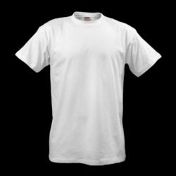 T-Shirt Twenty-three | Isolated Stock Photo by noBACKS.com