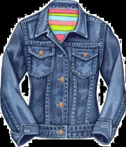 Denim Jacket Jeans Clip art - Jeans 564*659 transprent Png Free ...