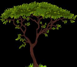 Exotic Tree PNG Clip Art - Best WEB Clipart