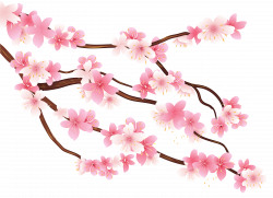 Pink Spring Branch PNG Clipart Image | Projects to try | Pinterest ...