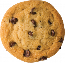 Cookie PNG Transparent Free Images | PNG Only