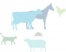 Frontiers in Veterinary Science | Animal Nutrition and Metabolism