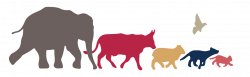 Emergency Vet Plymouth Meeting | Hickory Veterinary Hospital