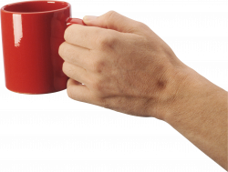 Hand Holding Cup | Isolated Stock Photo by noBACKS.com