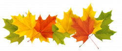 Transparent Fall Leaves PNG Picture | Gallery Yopriceville - High ...