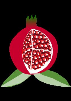 Clipart - pomegranate fruit