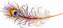 Peacock Feather PNG Transparent Images | PNG All | PNG Clip Arts ...